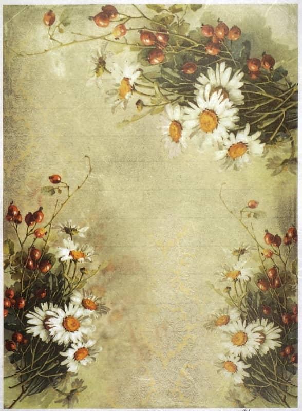 Rice Paper - Daisies & Rose Hips Wallpaper