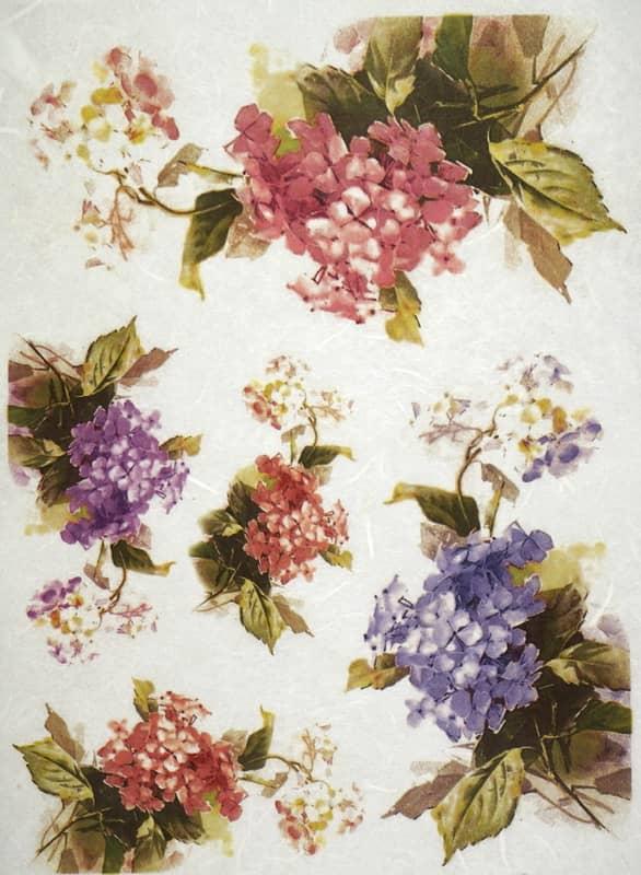 Rice Paper - Hydrangea Multicolor