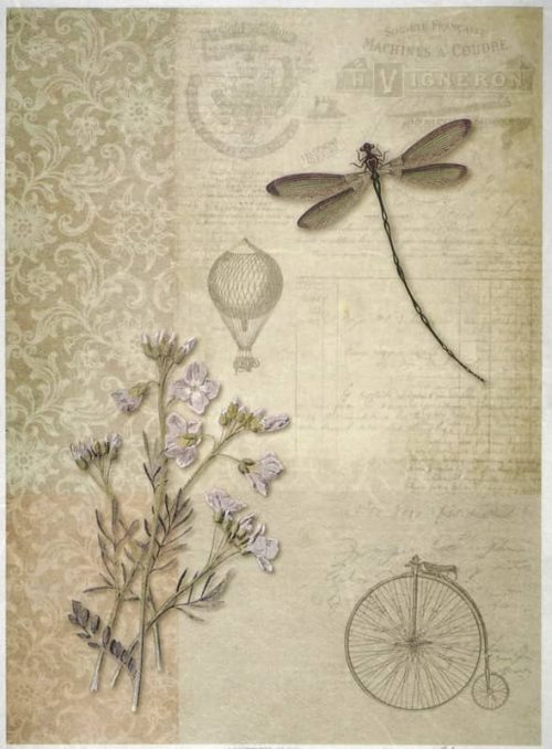 Rice Paper - Dragonfly on Brown-