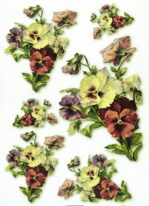 Rice Paper - Pansy