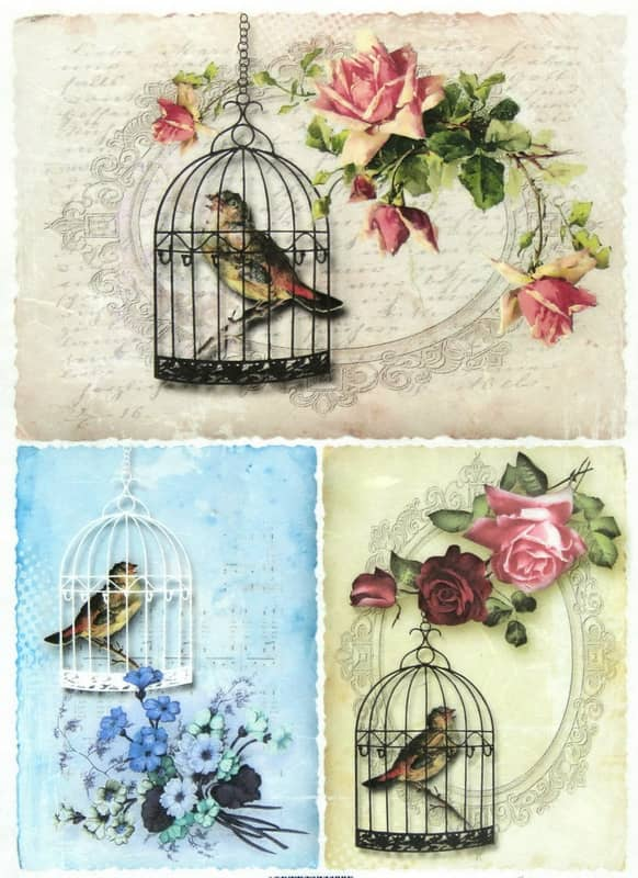 Rice Paper - Birdcages
