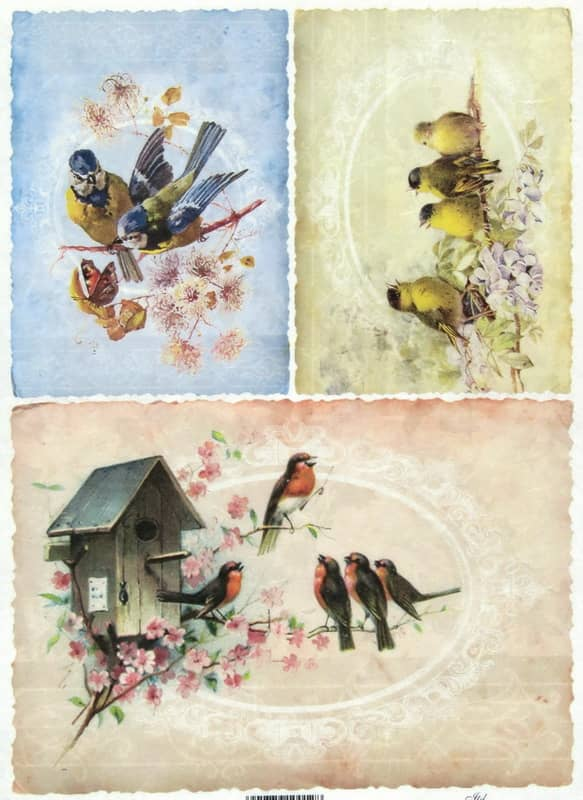Rice Paper - Birds in Nest