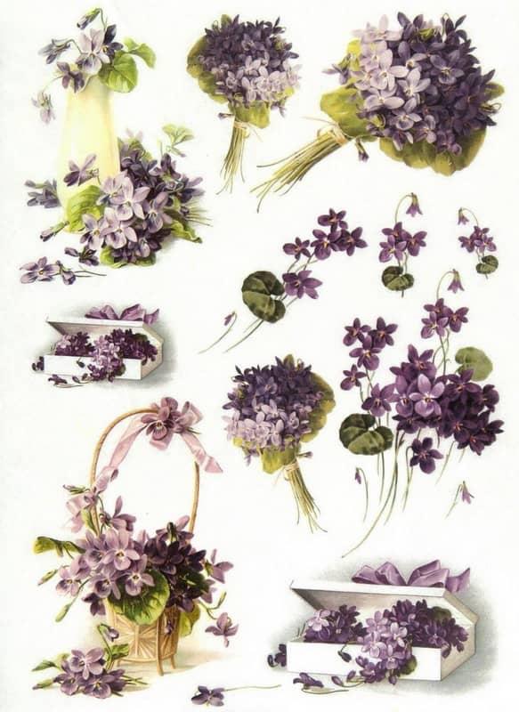 Rice Paper - Violet Bouquet
