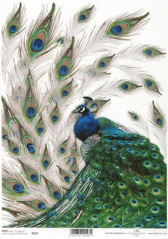 Rice Paper - Vintage Peacock