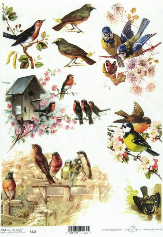 Rice Paper - Vintage Birds