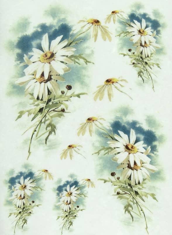 Rice Paper - Marguerite