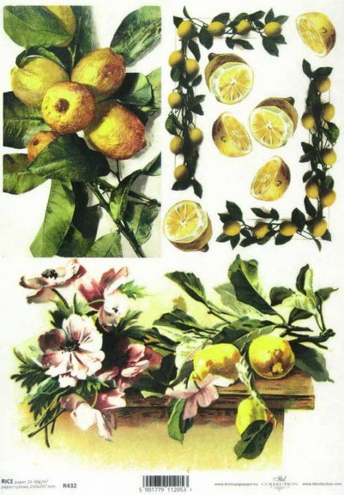 Rice Paper - Lemons