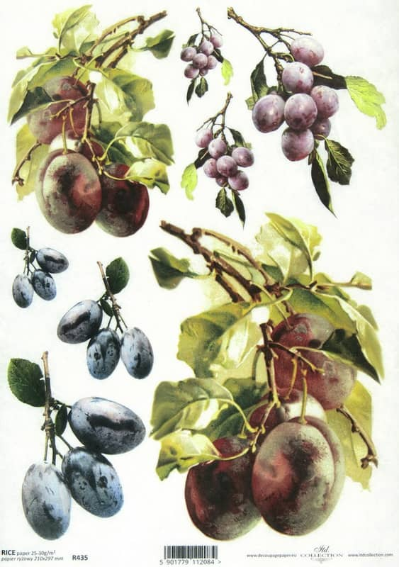 Rice Paper - Plums