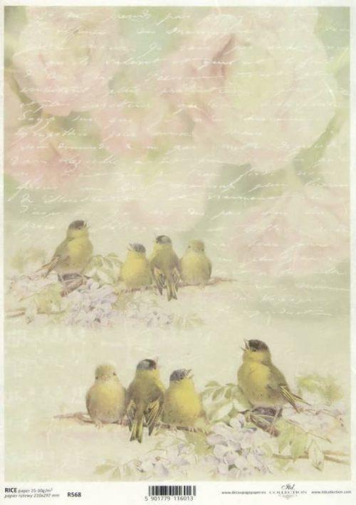 Rice Paper - Vintage Bird Family