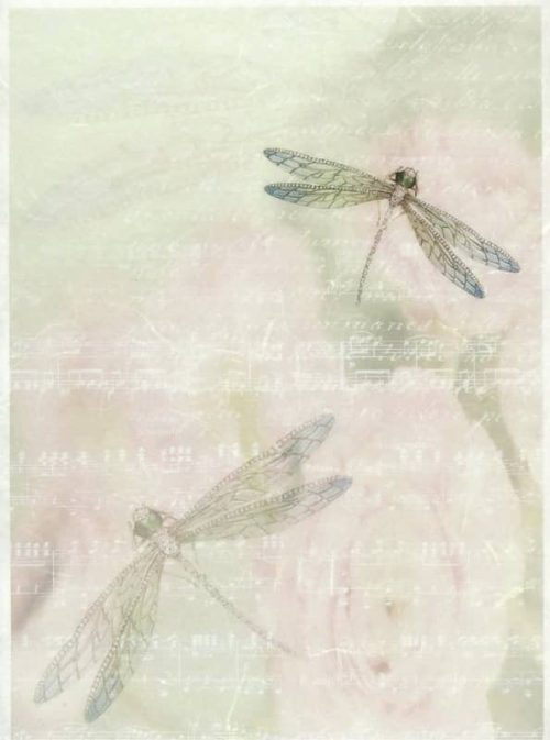 Rice Paper - Writing Paper Dragonfly