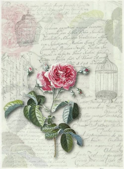 Rice Paper - Rose with Birdcages