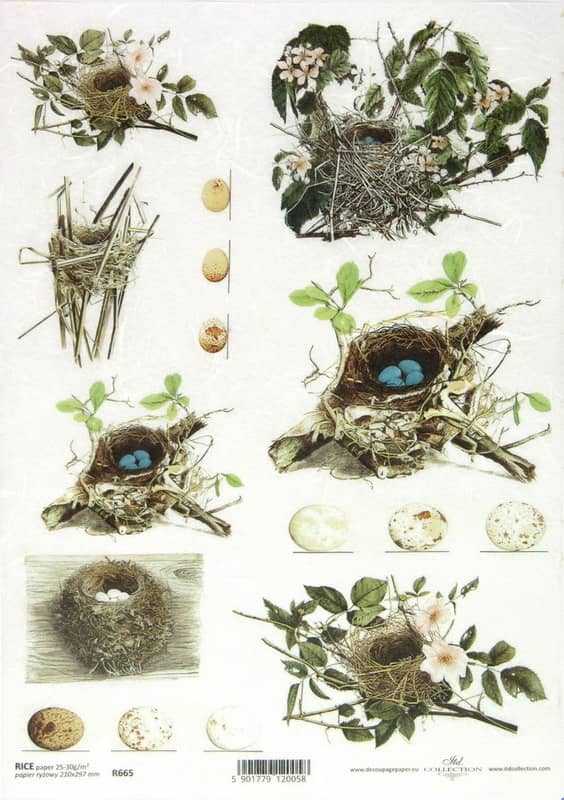 Rice Paper - Nests Eggs