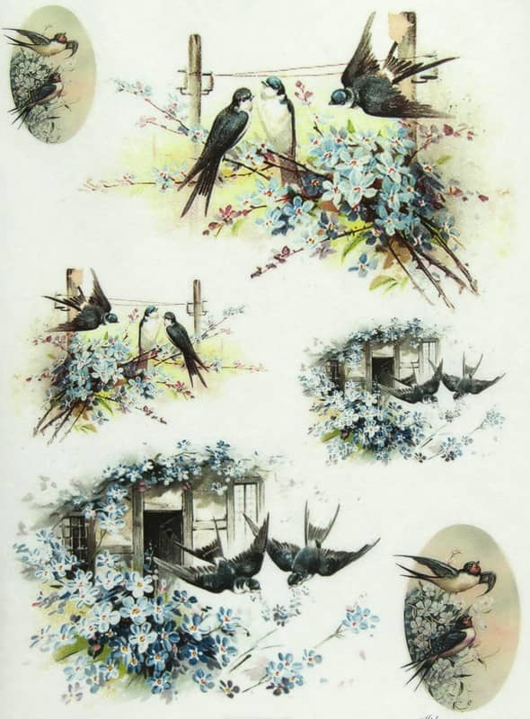 Rice Paper - Swallows