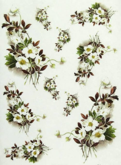 Rice Paper - Strawberry Flowers