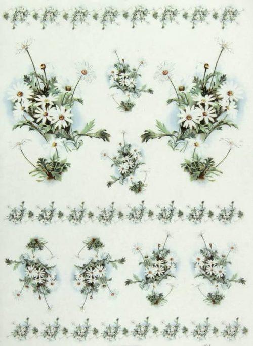 Rice Paper - Daisies