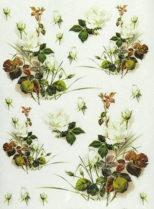 Rice Paper - White Roses
