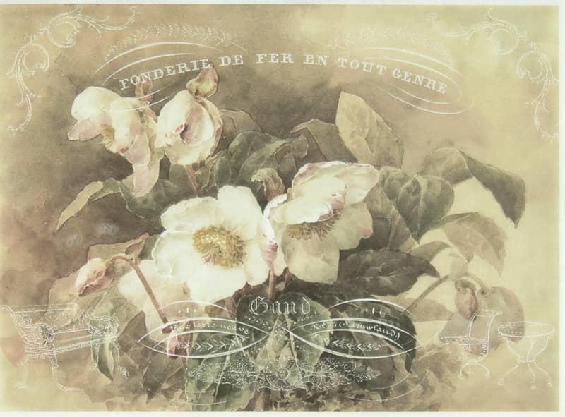 Rice Paper - White Gardenia