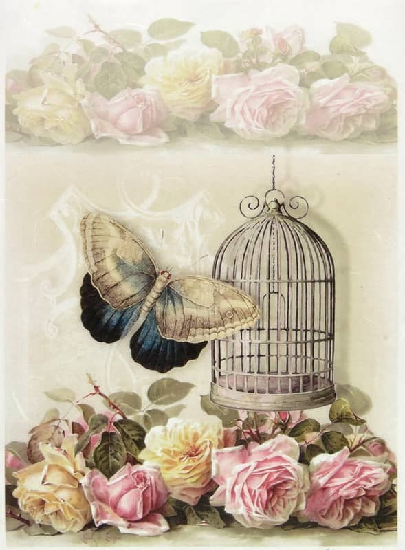 Rice Paper - Cage Rose Butterfly