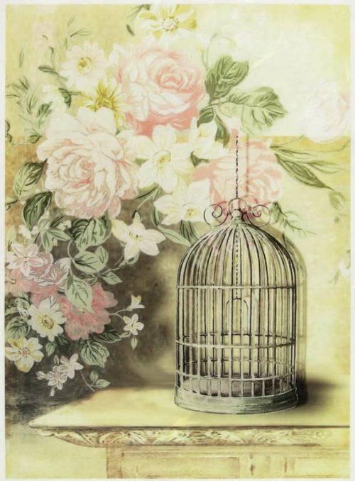 Rice Paper - Vintage Bird Cage