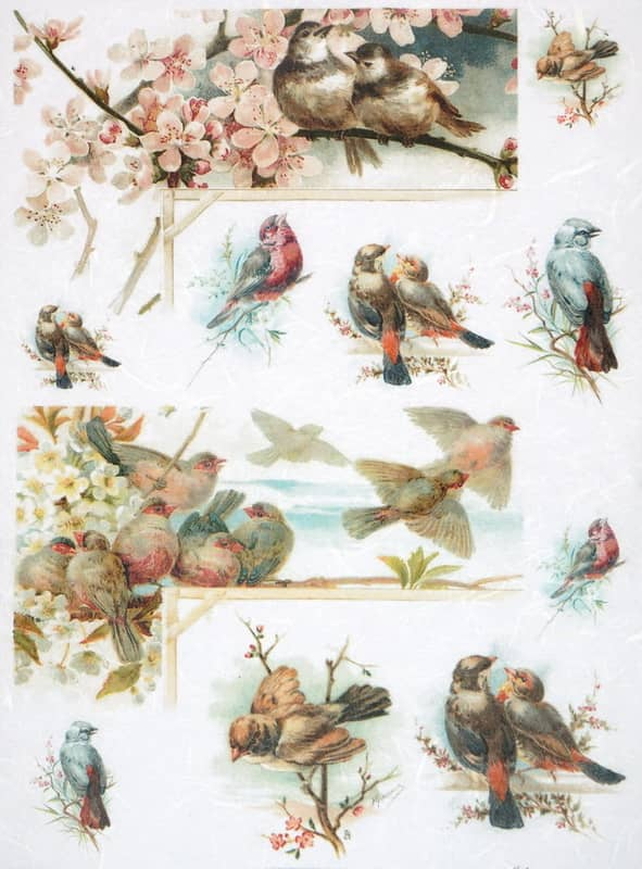 Rice Paper - Blossom and Birds
