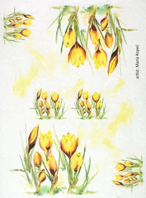 Rice Paper - Painted Flower Crocus
