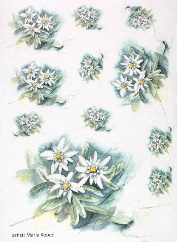 Rice Paper - Painted Flower Jasmine