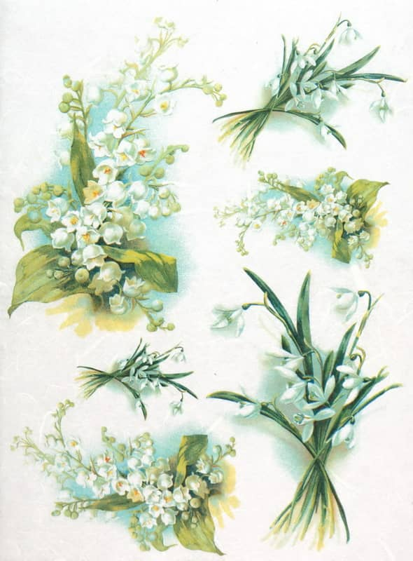 Rice Paper - Lily of the Valley