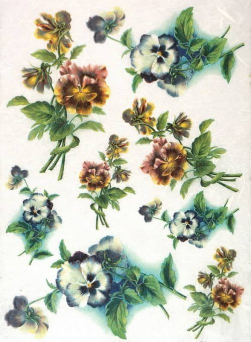 Rice Paper - Colorful Pansy