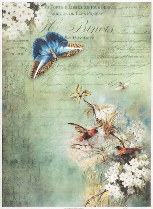 Rice Paper - Vintage Birds on Flower