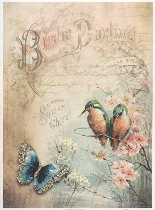 Rice Paper - Birdie Darling
