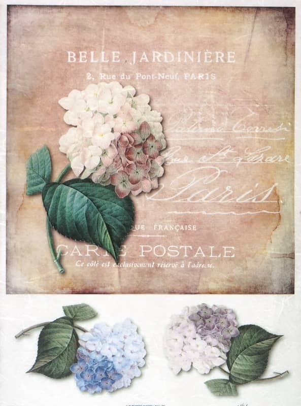 Rice Paper - Vintage Hydrangea Card