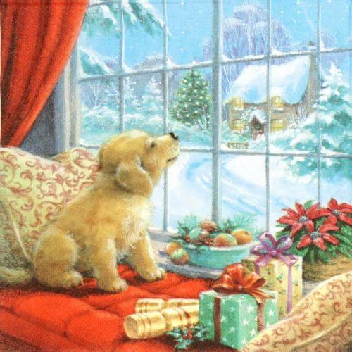 Lunch Napkins (20) - Puppy on Window