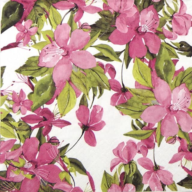 Lunch Napkins (20) - Flowering Clematis Pink