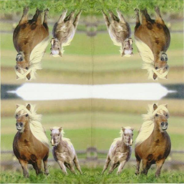 Paper Napkin - Horses Arabella
