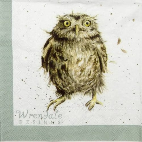 Cocktail Napkins (20) - Wrendale Design: What a Hoot