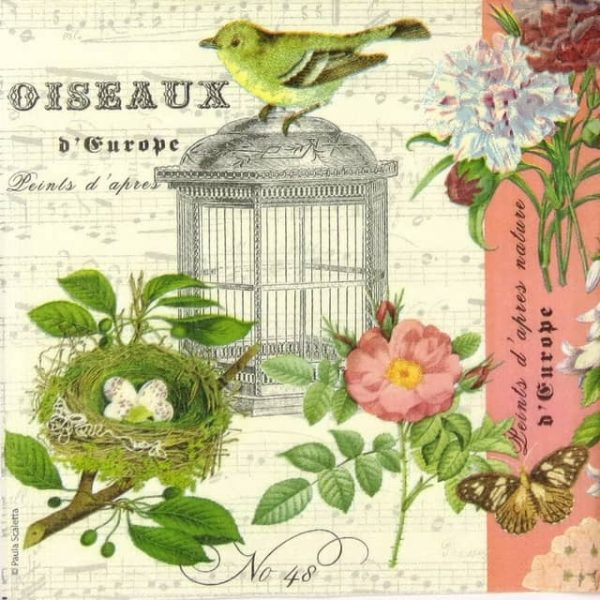 Paper Napkin - Oiseaux