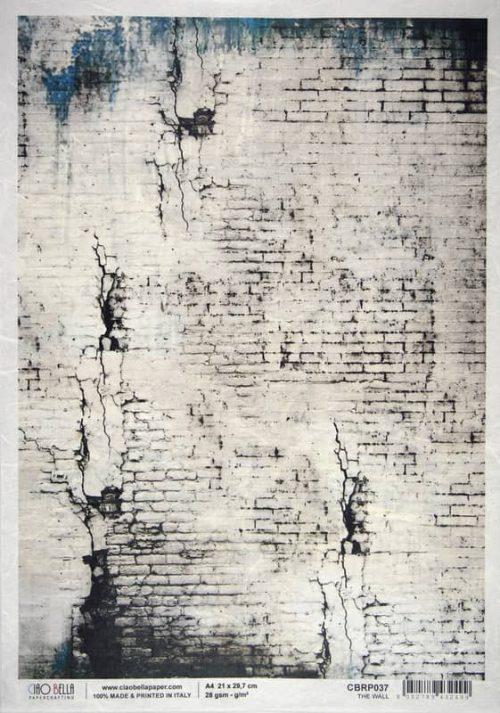 Rice Paper - The Wall - Leonardo