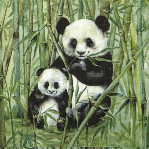 Lunch Napkins (20) - Panda