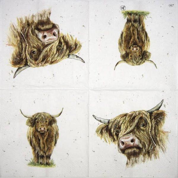 Paper Napkin - Farmfriends Galloway