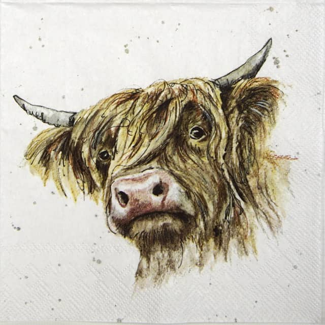 Paper Napkin - Farmfriends Galloway