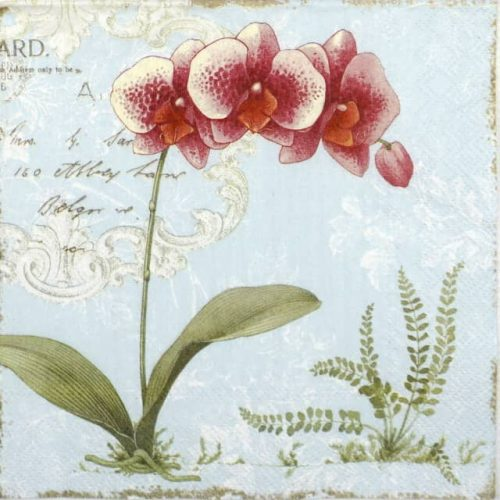 Paper Napkin - Orchid Light Blue
