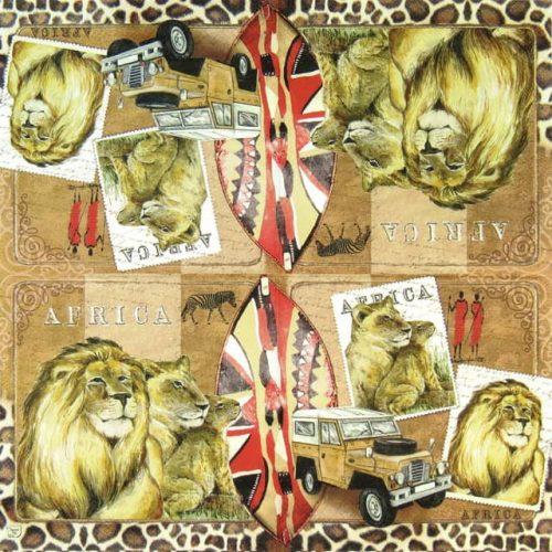 Paper Napkin - Africa