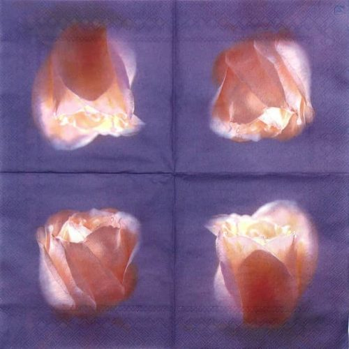 Paper Napkin - Rosenlicht