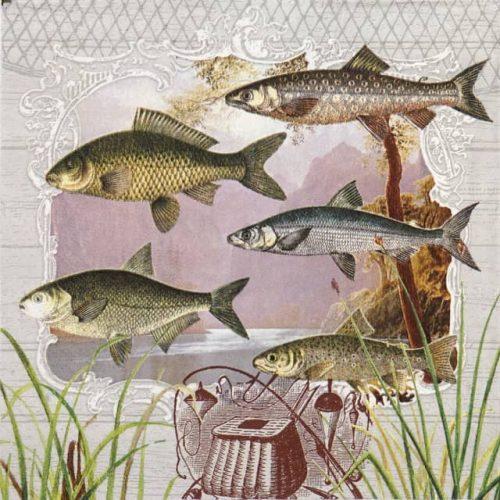 Lunch Napkins (20) - Fish Portrait
