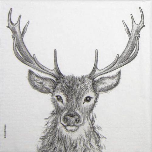 Paper Napkin - Arnolt Design: Paul