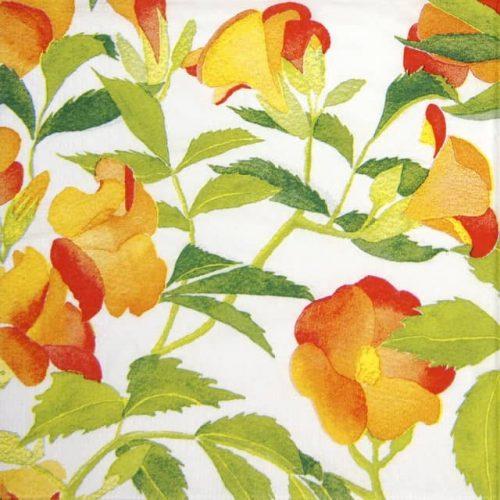 Paper Napkin - Brigitte Murat: Bégonia