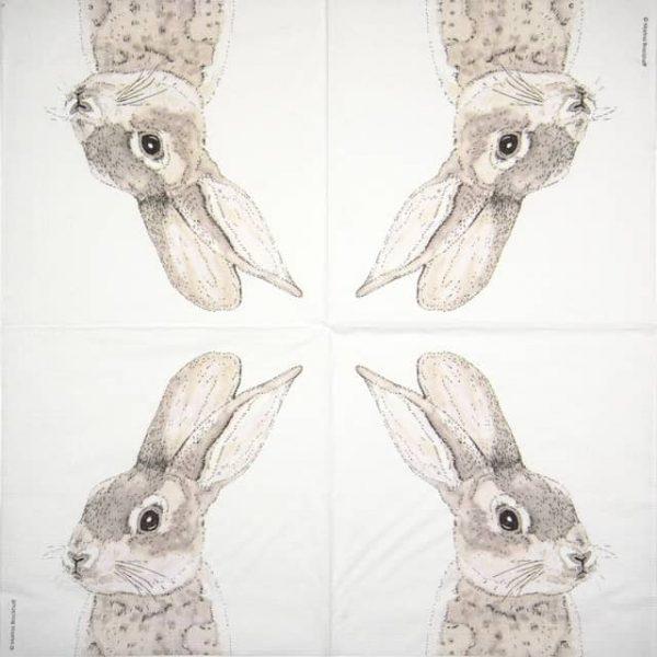 Paper Napkin - Charlotte Galloux: Rabbit