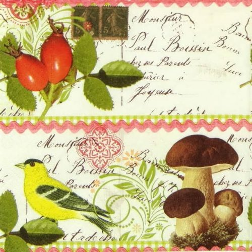 Lunch Napkins (20) - Botanical Postcard