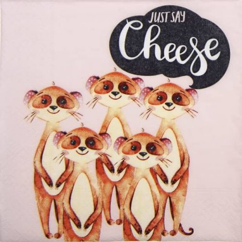 Lunch Napkins (20) - Say Cheese