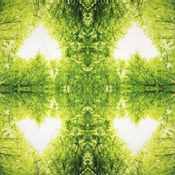 Paper Napkin - Nature Love